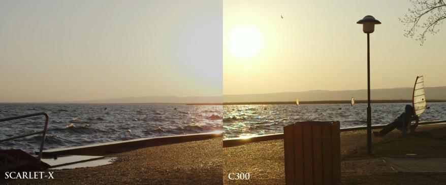 scarlet-vs-C300